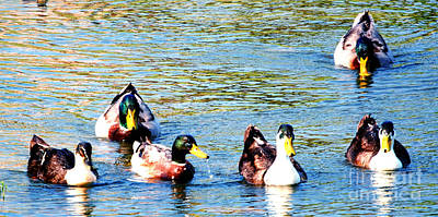 Getting My Ducks In A Row Poster by DiDi Higginbotham