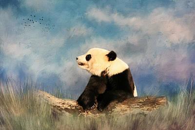 Giant Panda Poster by Kim Hojnacki