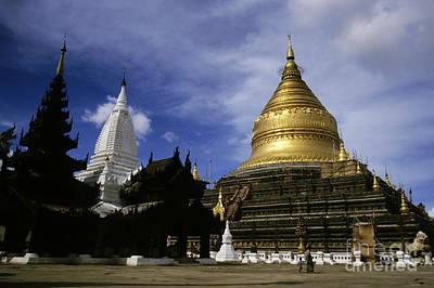 Gilded Stupa Of The Shwezigon Pagoda Poster