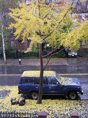 Poster featuring the photograph Ginkgo In Fall by Erik Falkensteen