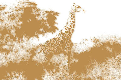 Giraffe 2 Poster by Joe Hamilton