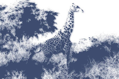 Giraffe Poster by Joe Hamilton