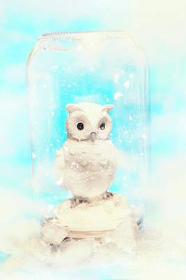 Glass Jar Winter Owl Poster