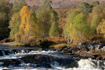 Poster featuring the photograph Glen Affric In Autumn by Karen Van Der Zijden