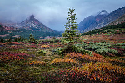 Glen Alps In The Autumn Rain Poster