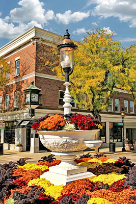 Glen Ellyn Watering Trough Poster
