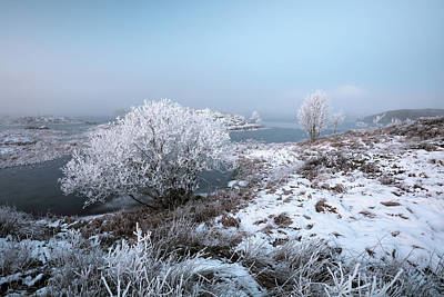 Poster featuring the photograph Rannoch Moor Winter Mist by Grant Glendinning