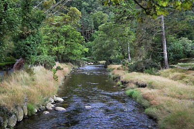 Poster featuring the photograph Glendasan River. by Terence Davis