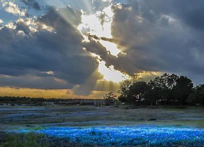 Da211 Glorious Bluebonnet Sunset By Daniel Adams Poster