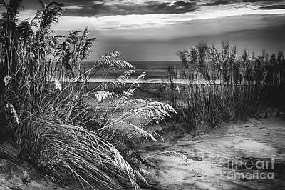 Poster featuring the photograph Glowing Dunes Before Sunrise On The Outer Banks Bw by Dan Carmichael