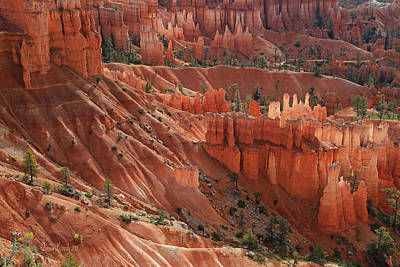 Poster featuring the photograph Glowing Hoodoos by Donna Kennedy