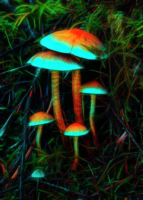Poster featuring the photograph Glowing Mushrooms by Yulia Kazansky
