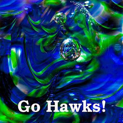 Go Hawks Poster by David Patterson