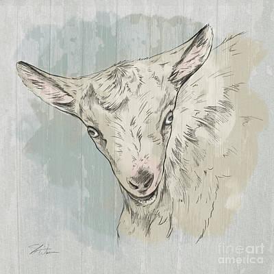 Goat Portrait-farm Animals Poster