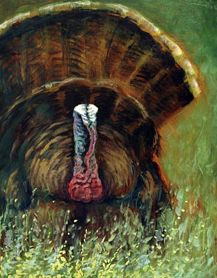 Gobbler In The Grass Poster by Suzanne McKee