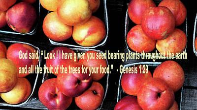 God Gives Fruit For Food Poster