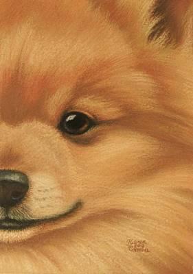 Goggie Pomeranian Poster by Karen Coombes