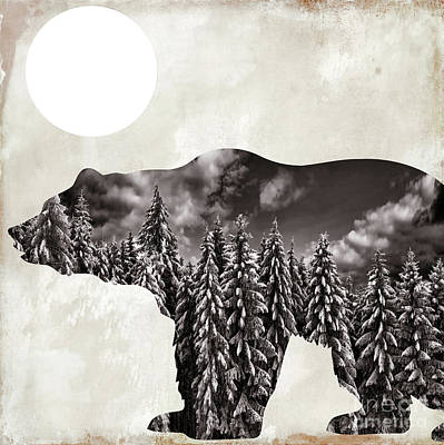 Going Wild Bear Poster by Mindy Sommers