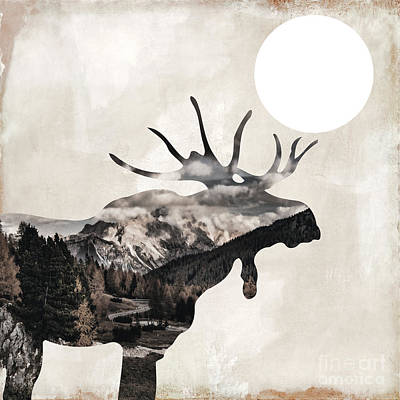 Going Wild Moose Poster by Mindy Sommers