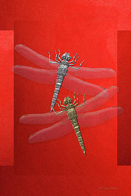 Poster featuring the digital art Gold And Silver Dragonflies On Red Canvas by Serge Averbukh
