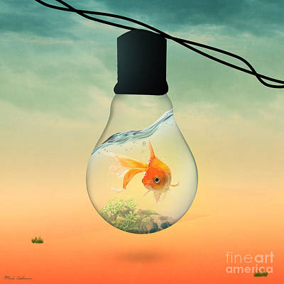 Gold Fish 4 Poster