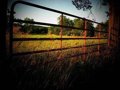 Golden Country Fence Poster by Joyce Kimble Smith