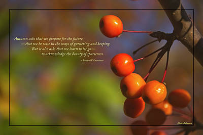 Golden Crab Apples In The Sun Poster by Mick Anderson
