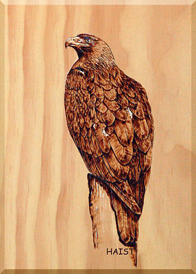 Golden Eagle Poster by Ron Haist