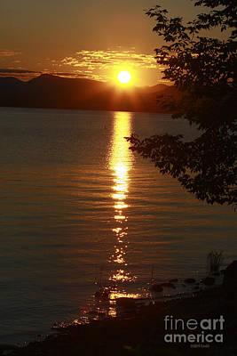 Golden Evening Sun Rays Poster