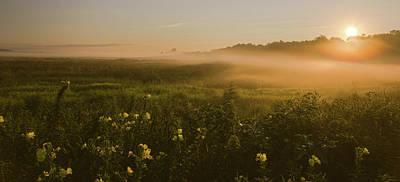 Golden Fog Sunrise At The Refuge Poster