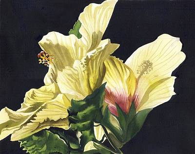Golden Hibiscus Poster by Alfred Ng