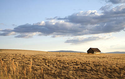 Golden Hours On The Prairies Poster by Theresa Tahara