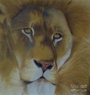 Golden Lion Poster