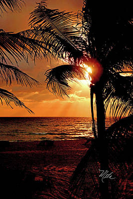 Golden Palm Sunrise Poster