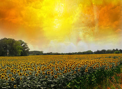 Golden Sunflowers Of Nimes Poster