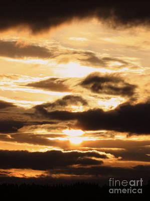 Golden Sunset Poster by Carol Groenen