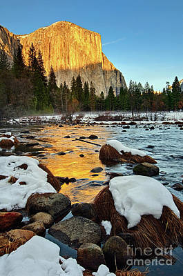 Golden Sunset - El Capitan In Yosemite National Park. Poster