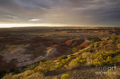 Poster featuring the photograph Golden Sunset Over The Painted Desert by Melany Sarafis