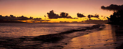 Golden Tide Poster by Sun Gallery Photography Lewis Carlyle