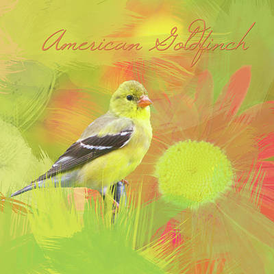 Poster featuring the photograph Goldfinch Watercolor Photo by Heidi Hermes