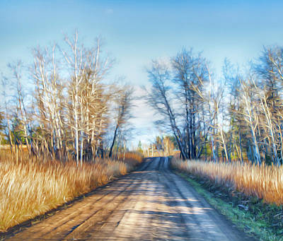Poster featuring the photograph Goose Lake Road by Theresa Tahara