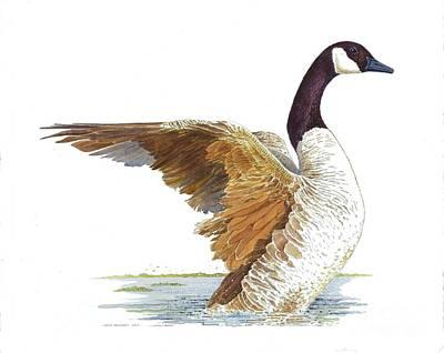 Goose Taking Flight Poster