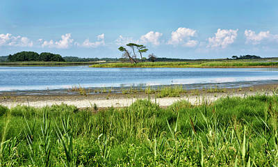 Poster featuring the photograph Gordons Pond - Cape Henlopen State Park - Delaware by Brendan Reals