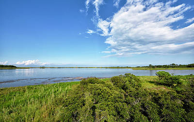 Poster featuring the photograph Gordons Pond Overlook - Cape Henlopen State Park - Delaware by Brendan Reals