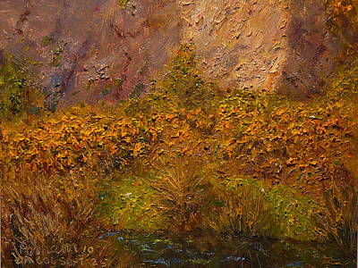 Gorse Near The Swamp Poster by Terry Perham