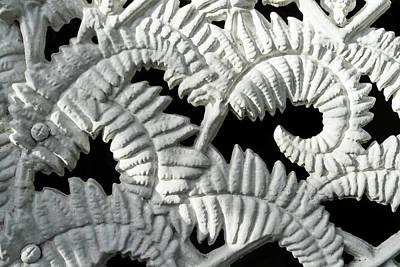 Graceful Black And White Fern Patterns - Take Two Poster by Georgia Mizuleva