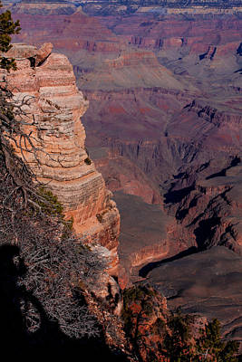 Poster featuring the photograph Grand Canyon 11 by Donna Corless