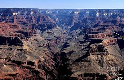 Poster featuring the photograph Grand Canyon 2 by Erica Hanel