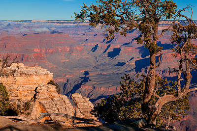 Poster featuring the photograph Grand Canyon 20 by Donna Corless