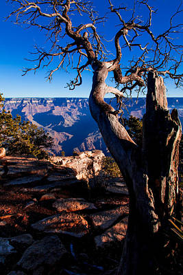 Poster featuring the photograph Grand Canyon 27 by Donna Corless